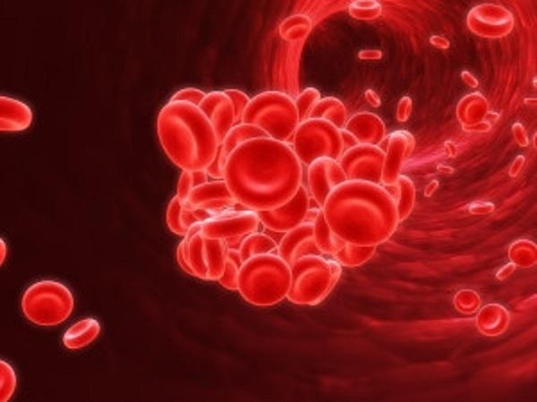 Kết quả hình ảnh cho Những người bị bệnh đa hồng cầu có số lượng hồng cầu răng